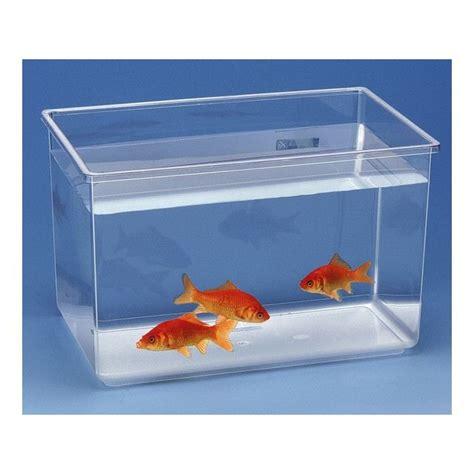aquarium pour poisson combattant pas cher esth 233 tique
