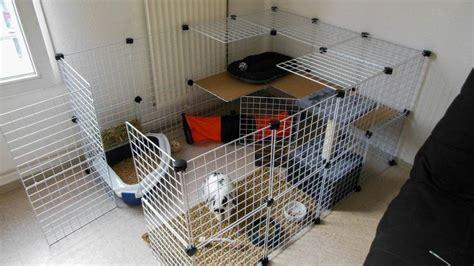 enclos interieur j adopte un lapin habitats sympa lapin interieur