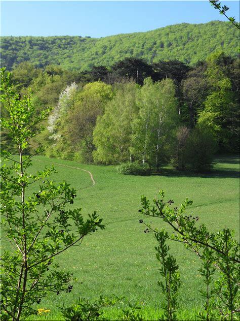 Unser Kleines Paradies Foto & Bild  Landschaft, Äcker