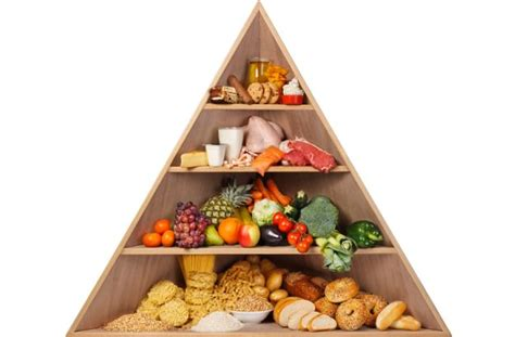 the ideal balanced diet what should you really eat ndtv food