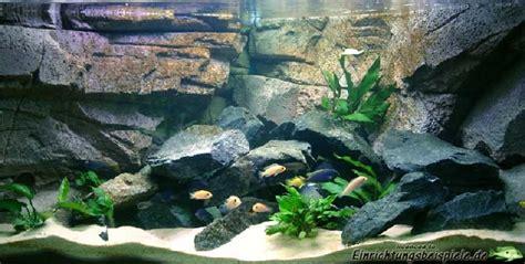 fabrication d 233 cor aquarium pas cher encombrement place