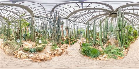 Palmengarten In Frankfurt Am Main  Botanischer Garten