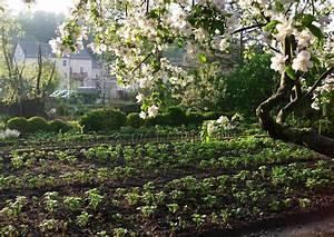 Garten Im Mai : mein garten im mai alles voll fr hkartoffeln ~ Markanthonyermac.com Haus und Dekorationen