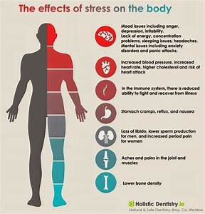 Stress: What it Does to Your Body ~ Mind Your Body