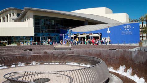 aquarium of the pacific california attraction expedia au