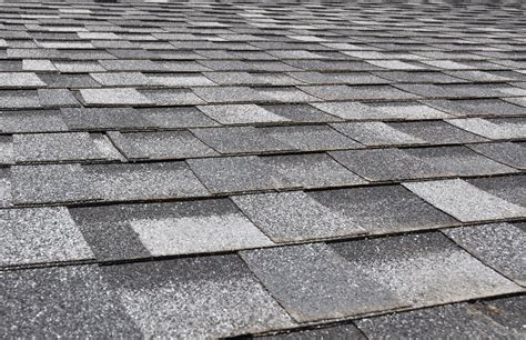 Tile Roofs Vs. Shingle Roofs Roofing Contractors In El Paso Texas Rooftop Restaurants Midtown Nyc Roof Pressure Cleaning Weston Fl Automotive Rack Systems How To Build A Deck Jobs Chicago Permits New Jersey Red Inn Seattle Airport Hotel