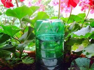 Pflanzen Bewässern Mit Plastikflasche : balkonkasten bew sserung pflanzen f r nassen boden ~ Markanthonyermac.com Haus und Dekorationen