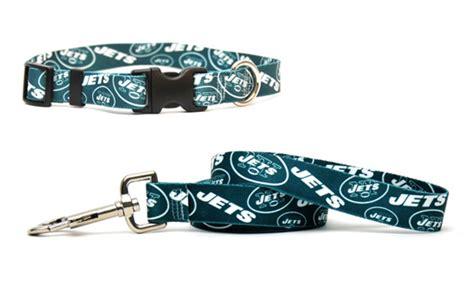 Nfl Afc Dog Collar With Leash
