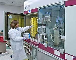 Cell Culture Core Laboratory at the Integrated Research ...