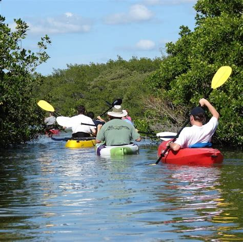 Paddle Boat Rentals Venice Beach by Coupons Sarasota Activities Like Beach Horses