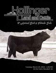 Hollinger Land and Cattle 6th Annual Bull and Female Sale ...