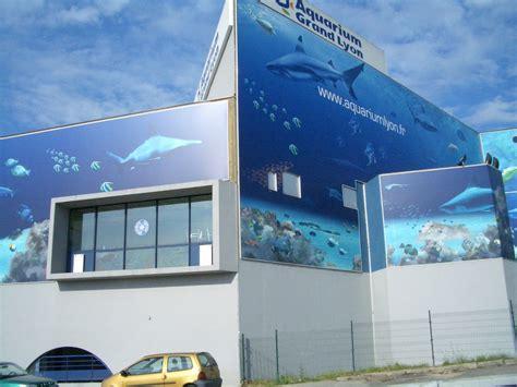 panoramio photo of aquarium lyon