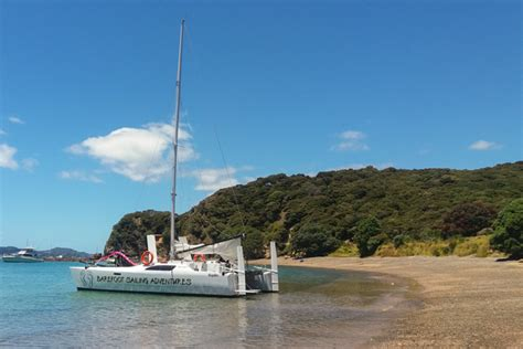 Catamaran Sailing Bay Of Islands Nz by Barefoot Day Sailing Charters Bay Of Islands