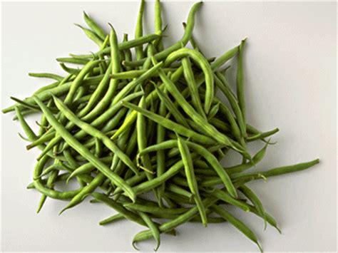 tout savoir sur les haricots verts