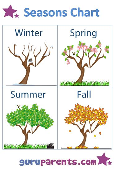 Free Seasons Worksheets For Preschoolers  The Seasons