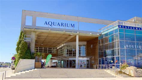 aquarium la rochelle d 233 couvrez la rochelle avec expedia fr
