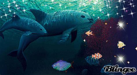 vaquita marina picture 131414497 blingee
