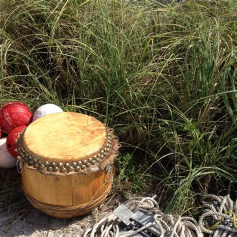 Dragon Boat Drum by 109 Best Images About Dragon Boating On Pinterest Hong