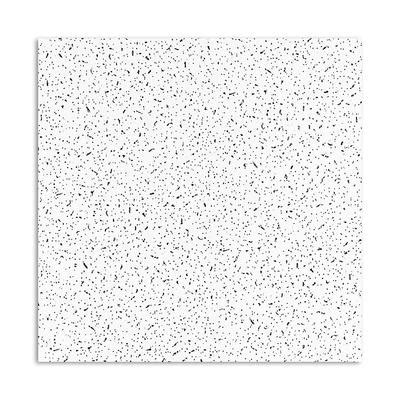 Ceiling Tiles Home Depot Canada by Usg Ceilings Plateau R725 Acoustical Ceiling Panels 2