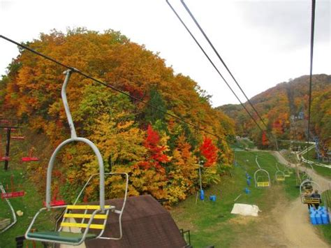 view from scenic chairlift picture of ober gatlinburg amusement park ski area gatlinburg