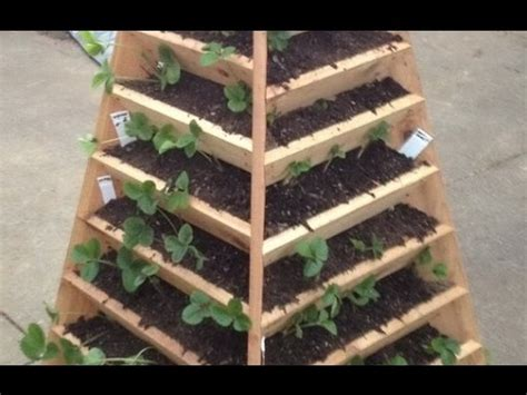Vertikaler Garten Selber Bauen Youtube