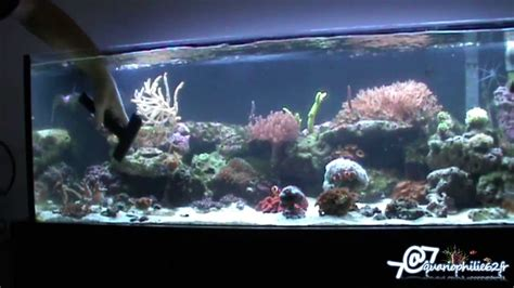entretien nettoyage d un aquarium r 233 cifal marin ou eau