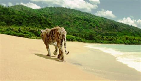 Movie Boy In Boat With Tiger by Life Of Pi Drink Play Love