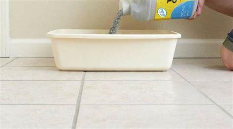 comment nettoyer la liti 232 re du chat avec du vinaigre blanc