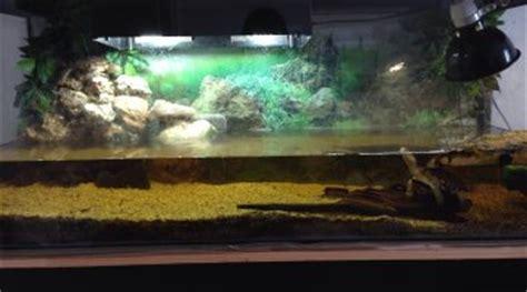 doit on laisser reposer l eau avant de la mettre dans l aquarium