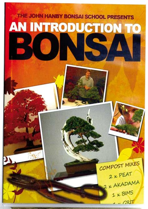 Dvd  An Introduction To Bonsai (ntsc) The International Bonsai Magazine