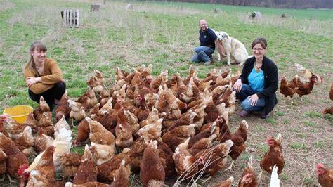 Aus Hühnern Wird Feinkost
