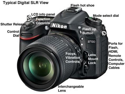 Digital SLR Buying Guide: Digital Single Lens Reflex DSLR