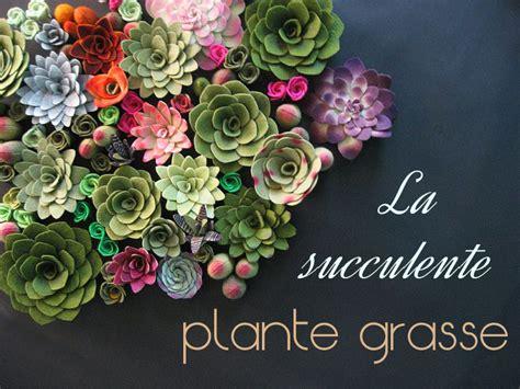 la succulente la plante grasse astuces d 233 co et conseil d entretien mademoiselle claudine