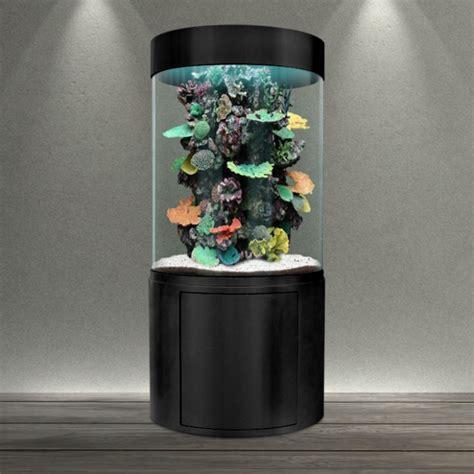 aquarium eau de mer colonne