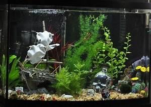 Coole Aquarium Deko : aquarium decoration ideas android apps on google play ~ Markanthonyermac.com Haus und Dekorationen