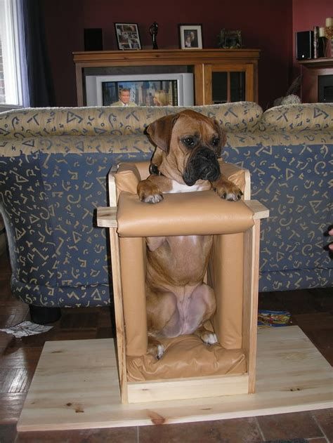 zoe and bailey s chair used for feeding a with