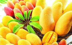 Huge Collection of Mango Wallpapers.