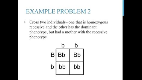 Punnett Square Problems  Video Search Engine At Searchcom