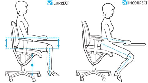 moizi ergonomics sitting properly