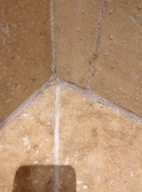 moisissure salle de bain joint obasinc