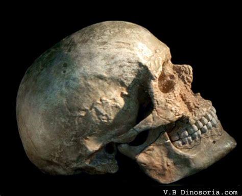 passions et partage pr 233 histoire sapiens
