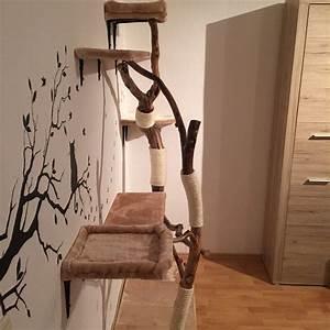 Kratzbaum Echter Baum : diy naturkratzbaum selber bauen interessantes f r katzenfreunde ~ Markanthonyermac.com Haus und Dekorationen