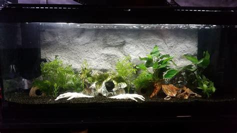 deco d aquarium fait maison segu maison