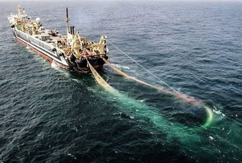 Biggest Fishing Boat In The World by World S Second Largest Super Trawler Enters Irish Waters