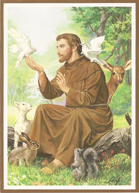 inspiration assisi st francis francis quote francisco de animal