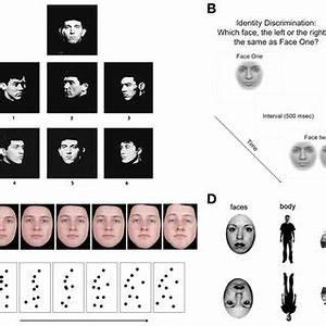 A) Plate from the Benton Facial Recognition Test (Benton ...