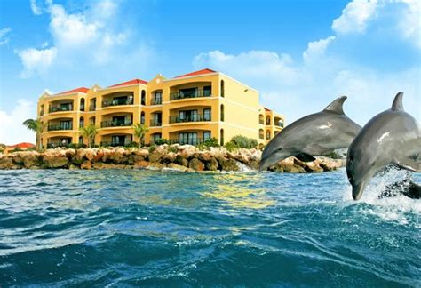 the royal sea aquarium resort voir les tarifs des chambres 5 avis et 594 photos cura 231 ao