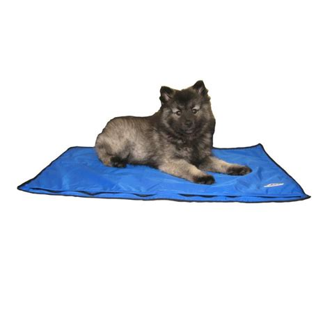 tapis rafra 238 chissant pour chien drykewl