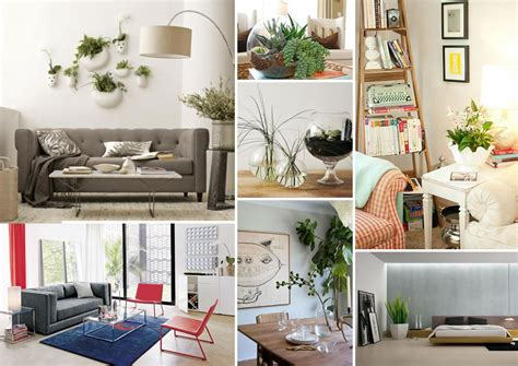 Home Decor Plants : Decorating With Houseplants