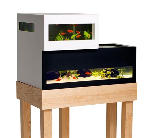 if it s hip it s here archives archiquarium a modern swedish fish tank by karl oskar ankarberg